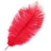 """Ostrich Drab Feathers 6-8"""" Premium Quality Red"""